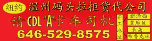 请A牌码头拉柜司机646-529-8575